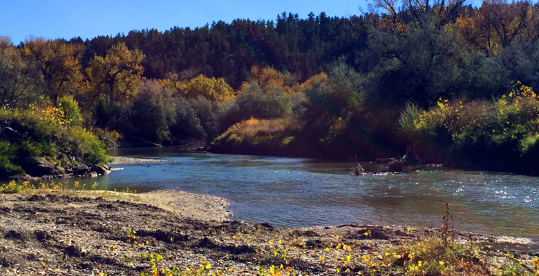 Musselshell River Fishing