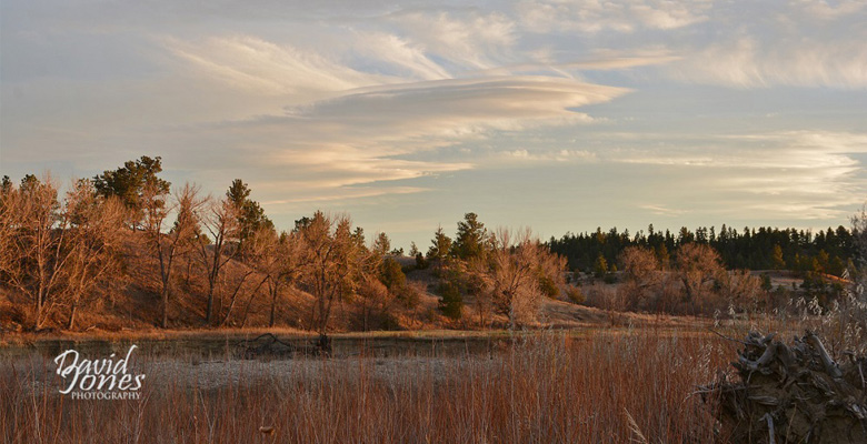 slideshow-Visit-Roundup-Montana-Autumn-Trees