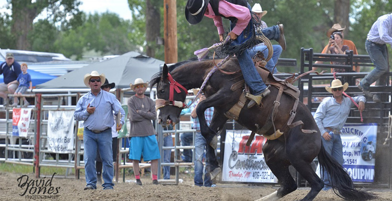 slideshow-Visit-Roundup-Montana-Rodeo-Bucking-Horse