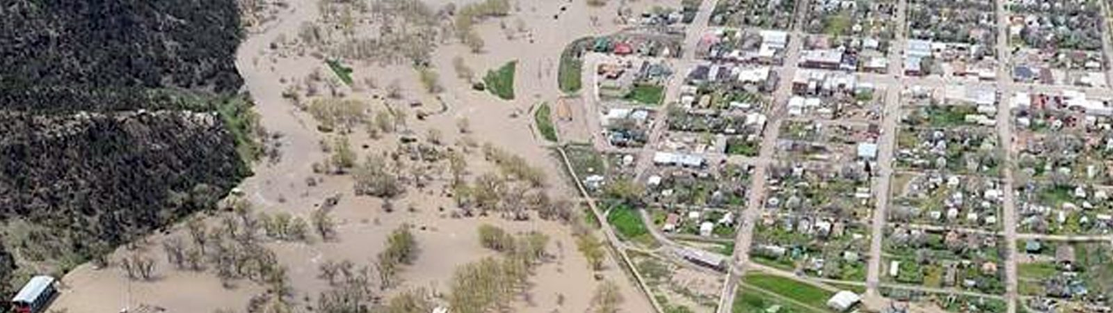 Roundup Flood 2011